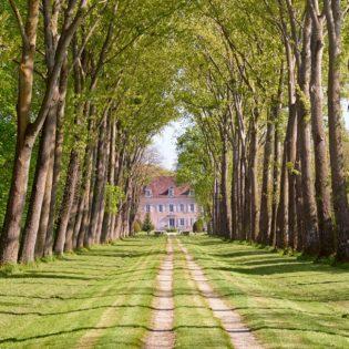 Allée cavalière du Château de Quincey