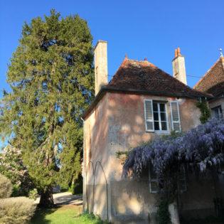 La Maison de l'Ange Gardien et sa glycine - Château de Quincey